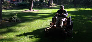 Premier Lawn Care Maintenance near me